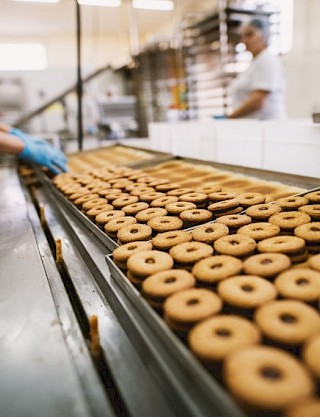Food processing - Magnetic Separation & Metal Detection